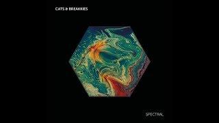CATS & BREAKKIES - ICARUS: RISE
