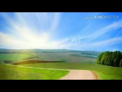 Sureh Ikhlas || Qul huwallahu ahad || qirat by Abdul Ahad, Best qirat, beautiful voice