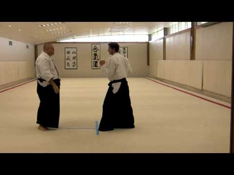 Merritt Steven's Aikido System - 1