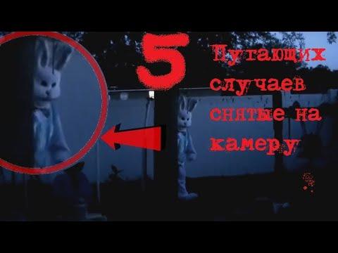 5 Пугающих случаев