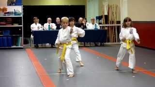 Karate Taikyoku Shodan Kata (no E)