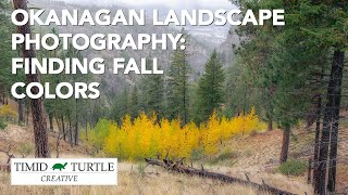 Okanagan Landscape Photography: Finding Fall Colors