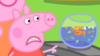 Peppa Wutz | Beim Tierarzt 🐟 Peppa Pig Deutsch Neue Folgen | Cartoons für Kinder