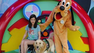 Magically.Mozart: A girl and her service dog as Disney cast members