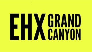 Electro-Harmonix Grand Canyon delay/looper