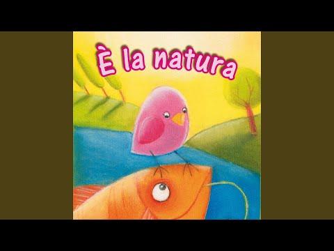 Abc della natura