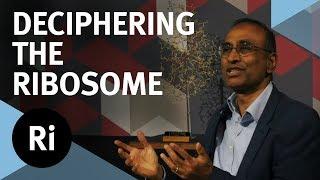 The Story of Deciphering the Ribosome - with Venki Ramakrishnan