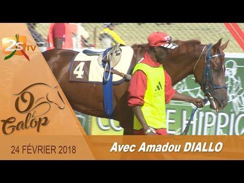 O GALOP DU 24 FÉVRIER 2018 AVEC AMADOU DIALLO