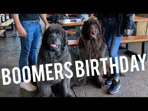 HAPPY BIRTHDAY BOOMER!!!
