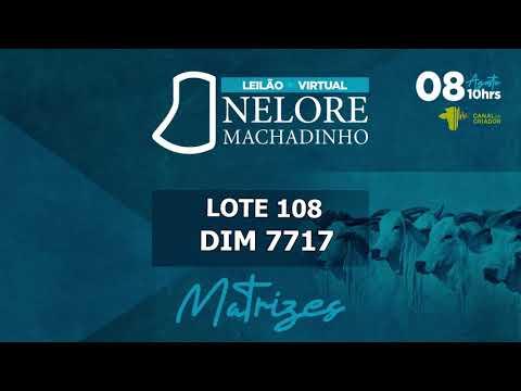 LOTE 108 DIM 7717