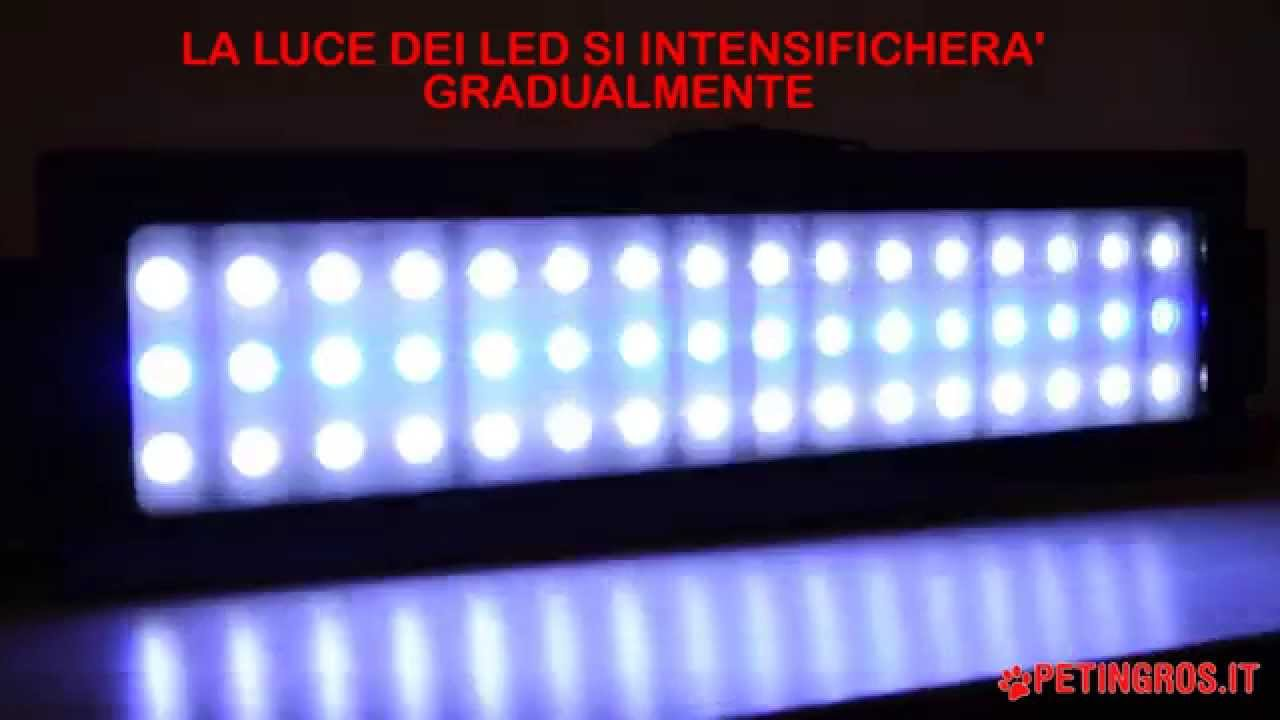Plafoniera a led per acquario ledsystem per acquari d for Luci led per acquario