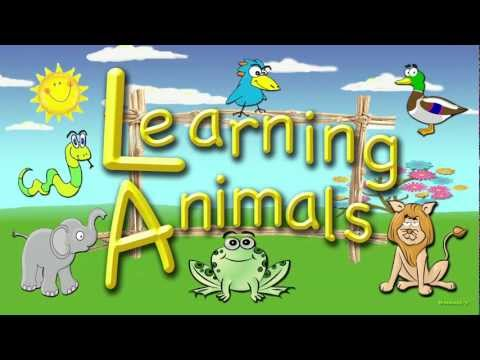 For Toddlers - Learning Animals, An Educational Video for Preschoolers