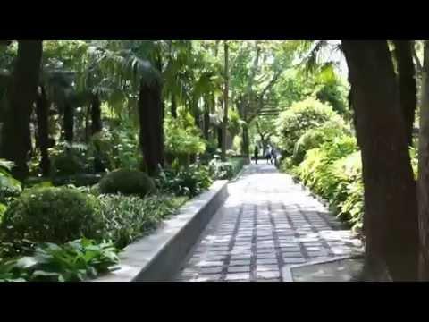 a walk through Fuxing Park, Shanghai