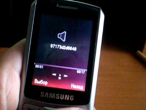 Видео обзор SAMSUNG S 3310