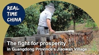 Live: 'Real Time China' - The fight for prosperity in Guangdong Province's Jiaowan Village改开40年后的角湾村