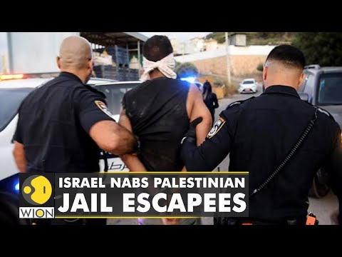 Four Palestinian prisoners appear in court after they were recaptured   English News   World News