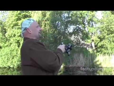 Matze Koch Karpfen: Hotspots im Wandel - Matzes Mätzchen 07-2014