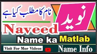 Naveed Name Meaning Name Info    Naveed Naam Ka Kya Matlab Hai Nameinfo    نوید نام کا کیا مطلب ہے
