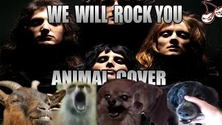 Baixar Queen - We Will Rock You (Animal Cover)