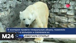 """""""Москва и мир"""": зоопарк открыт и пришла жара - Москва 24"""