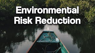 Smart Solutions to Environmental Risks | Dr. Deborah Brosnan