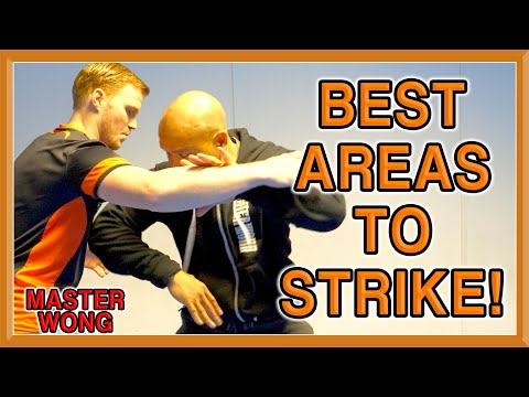 Best Areas To Strike in Self Defence | Master Wong