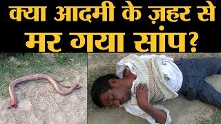आदमी के काटने से सांप के मरने वाली खबर की सच्चाई ये है | Hardoi | Snake Bite | The Lallantop