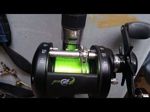 Pro Cat Rod And Reel Combo From Academy