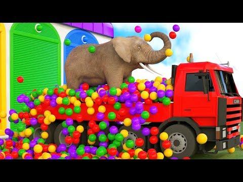 Des camions transportant des animaux aux citernes du zoo remplissent la piscine