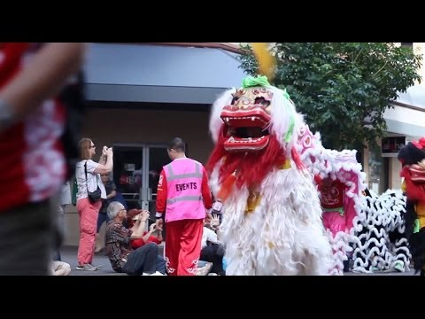 Chinese New Year Parade and Lion Dance 2014 - Honolulu, Hawaii
