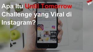 Apa Itu Until Tomorrow Challenge Yang Viral Di Instagram?