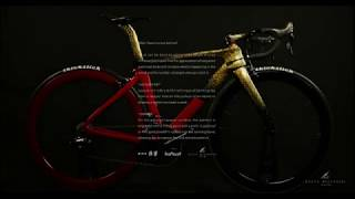 LACQUER ART ROAD BIKE 漆ロードバイク