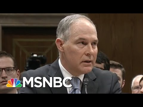 Mom Who Confronted Scott Pruitt Reacts To His Resignation | All In | MSNBC