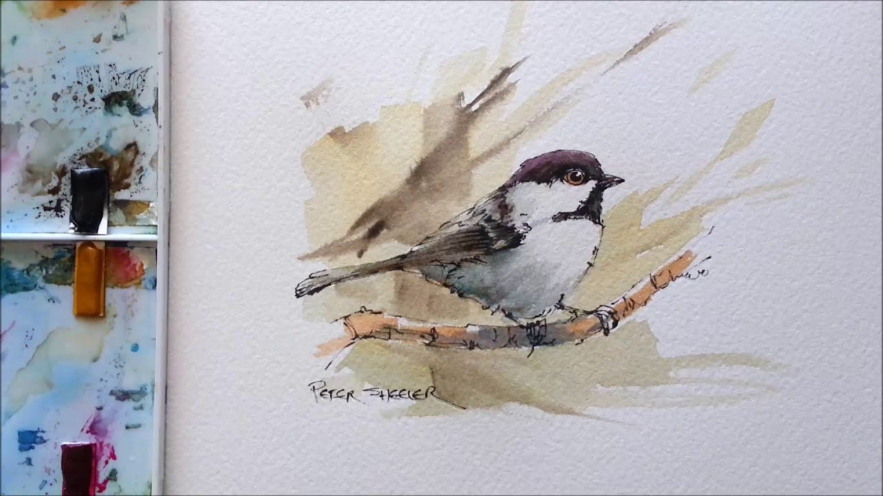 Line And Wash Black Capped Chickadee Great For Begginers