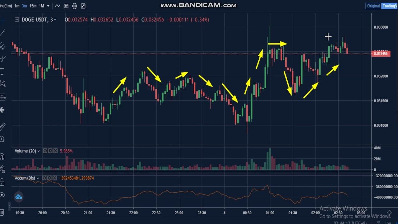 Dogecoin Price Live Chart - Dogecoin Price Doge Price ...