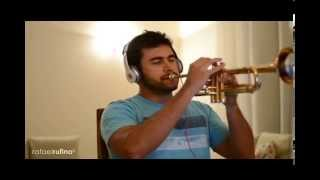 My Way - Frank Sinatra (Trumpet Bb Cover)