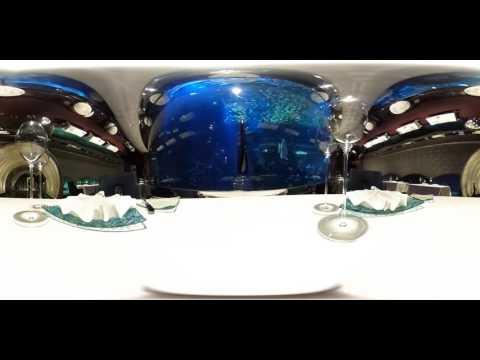 Restaurant Al Mahara, Burj Al Arab, aquarium, 360 video