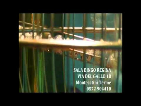 SALA BINGO REGINA - MONTECATINI TERME