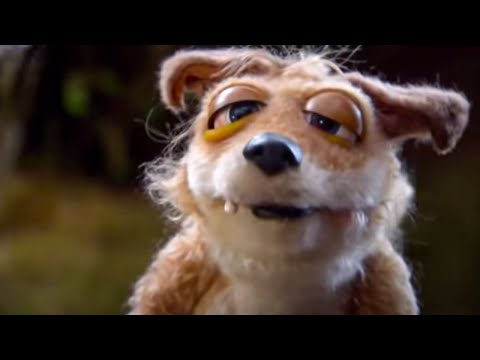 The runt gets examined - Mongrels - BBC Worldwide