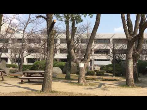 Osaka Univ. Toyonaka Campus