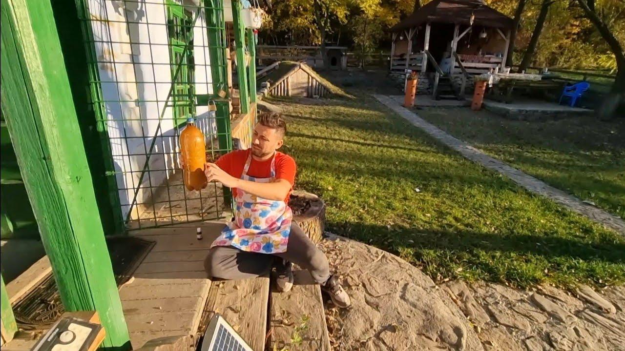 Download Mergem după lut și Ionuț cu Tiberiu pregătesc de mâncare la Căsuța din Pădure!
