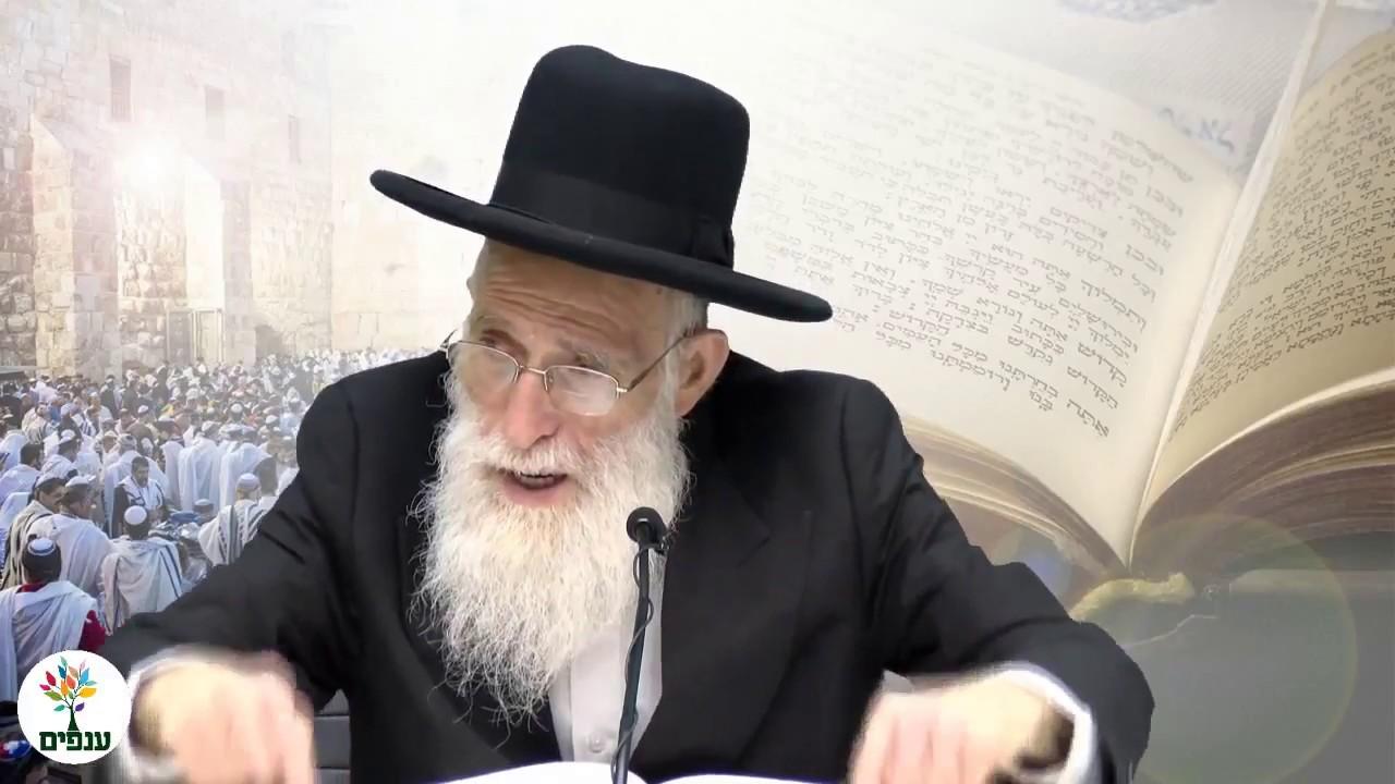 פרשת אחרי מות קדושים - הרב יהודה יוספי  HD
