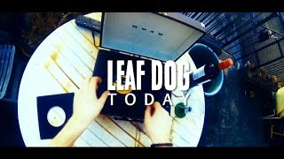 Leaf Dog - Today