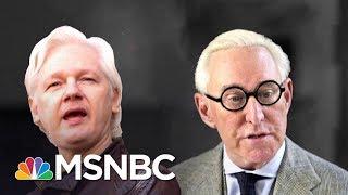 WSJ: Robert Mueller Probing Roger Stone's Ties To Wikileaks' Julian Assange | The 11th Hour | MSNBC