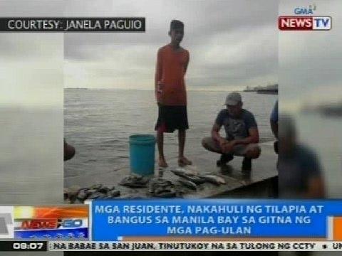 NTG: Mga residente, nakahuli ng tilapia at bangus sa Manila Bay sa gitna ng mga pag-ulan