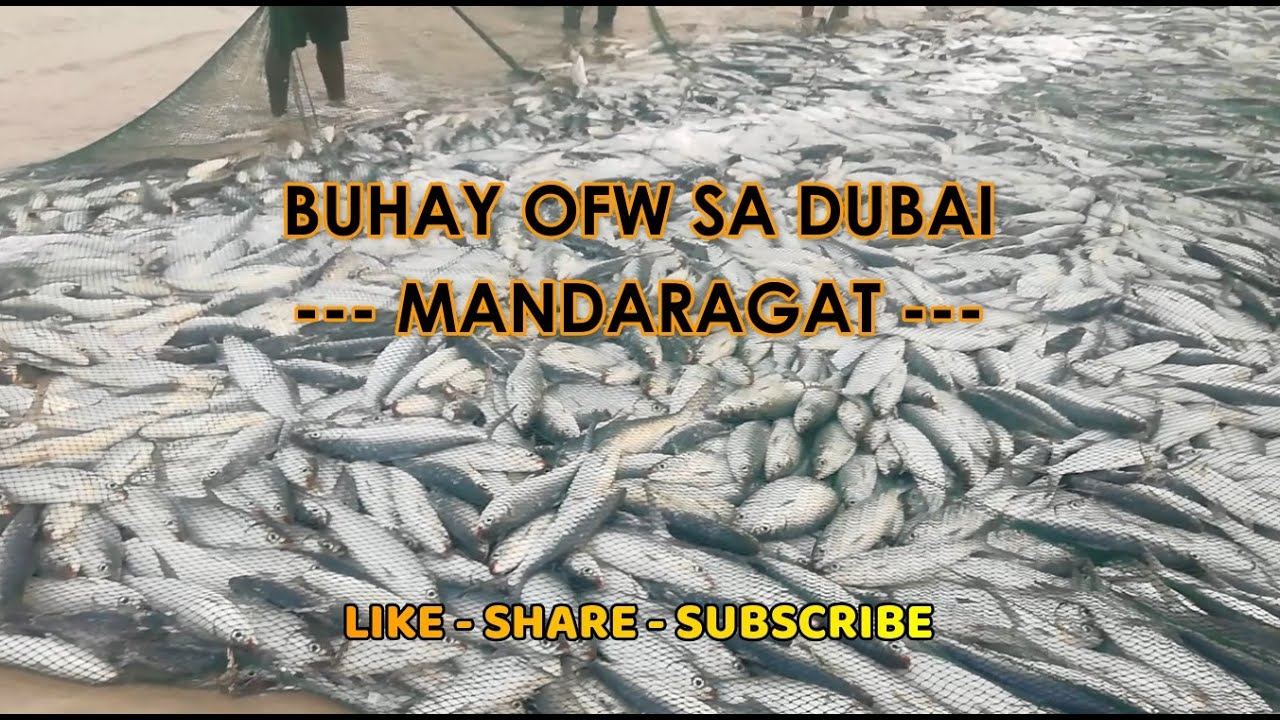 Buhay OFW sa Dubai || Mandaragat Edition 7