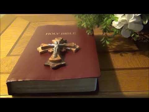 Sinhala Bible Hithopadaysha 3