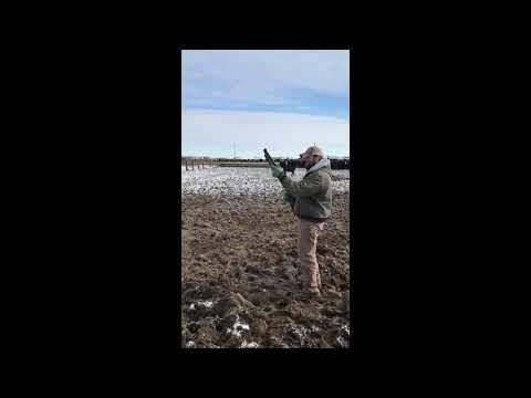 Pneu Dart gun overview and demonstration