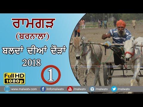 RAMGARH - ਰਾਮਗੜ੍ਹ  (Barnala) 🔴ਬਲਦਾਂ ਦੀਆ ਦੌੜਾ - Ox Races (FULL HD) 2018 - SHIFT 1