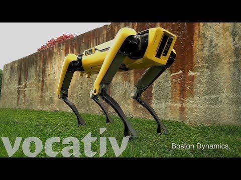 The Evolution Of Boston Dynamics' Robot Dogs